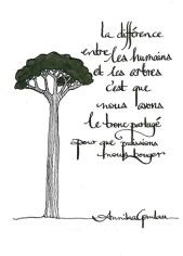 les arbres ©annikagemlau, lyrics inspired by Belén Gopegui
