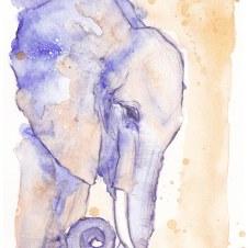 elefanti 1 ©annikagemlau - zur Visualisierung der eigenen Stärke, Kraft und Weisheit